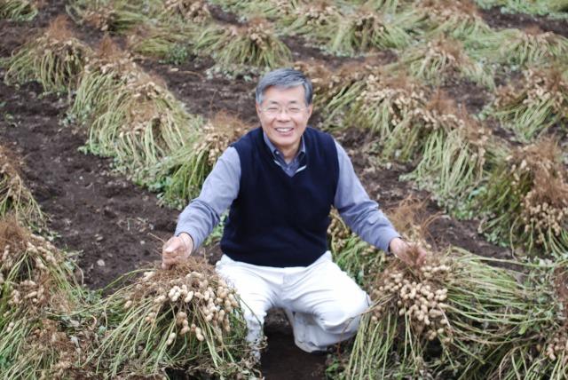 生産農家の落花生畑にて